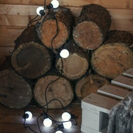 festoons on logs